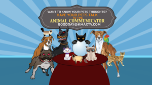 animal communicator