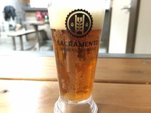 beer week 1