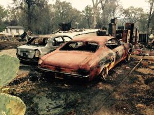 Valley Fire Aftermath 4