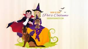Good Day Pet costumes 1