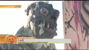 Lodi halloween house 1