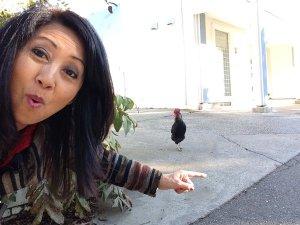 Rover Scavenger Hunt Items chicken