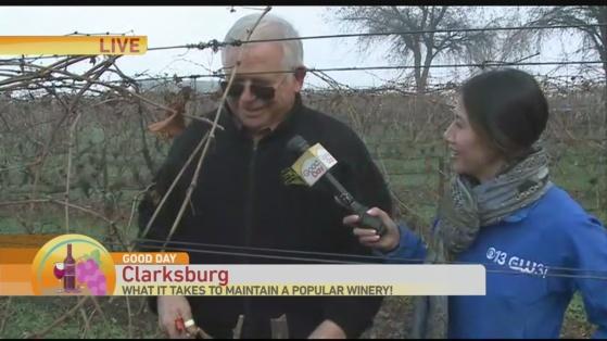 heringer wines 2