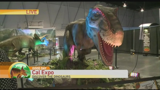 Discover the Dinosaurs 1