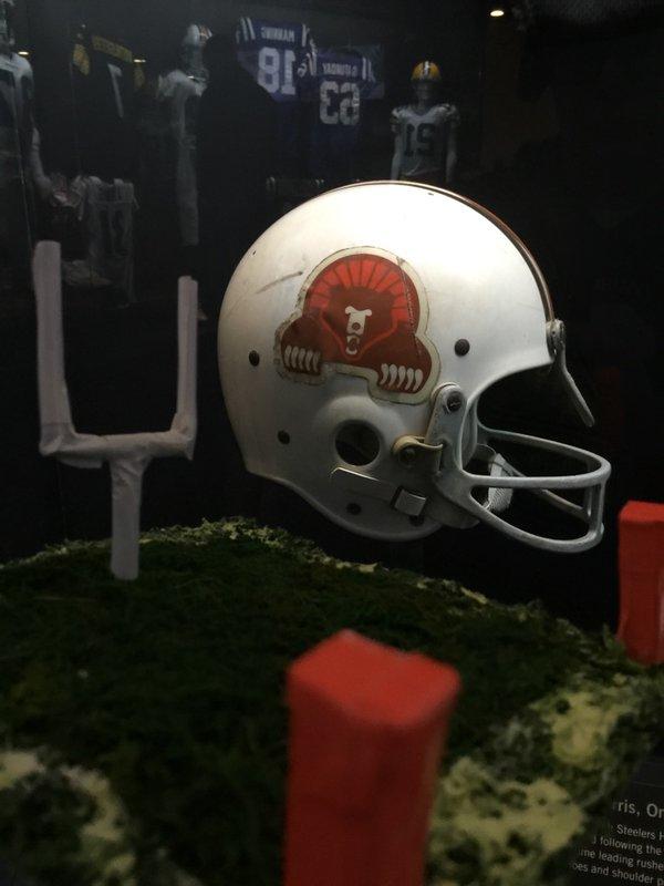 Cody at Trinton Museum Larry Csonka WFL Helmet