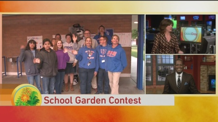 Foothill Garden Contest 1