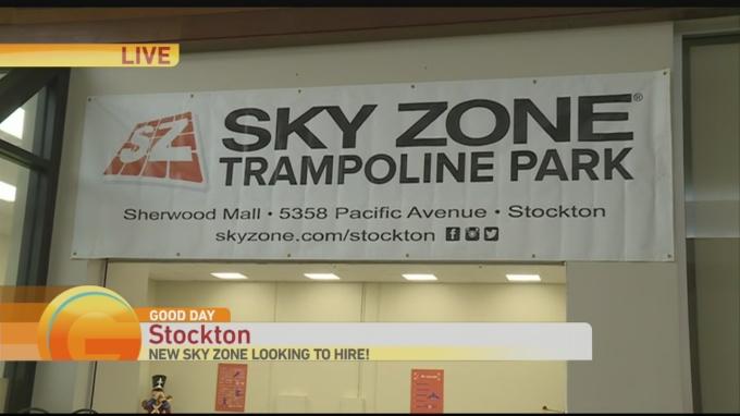 Skyzone 1