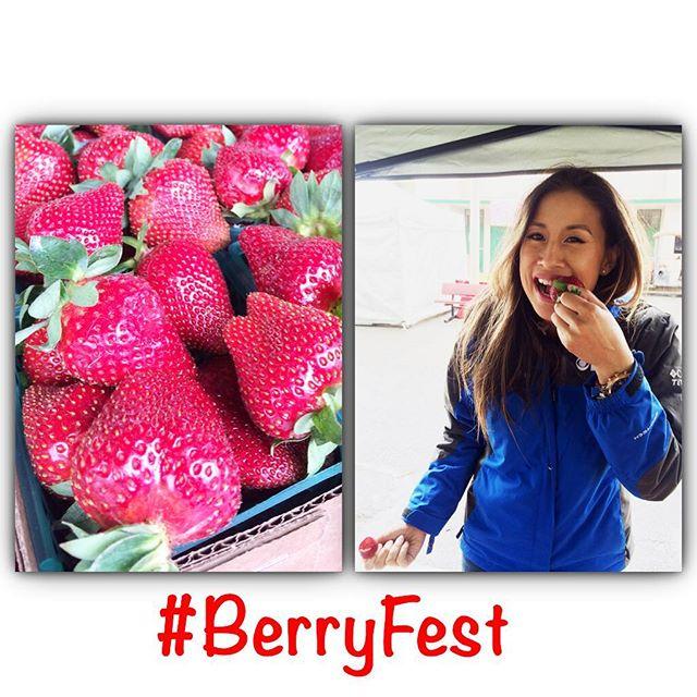 Berryfest 2