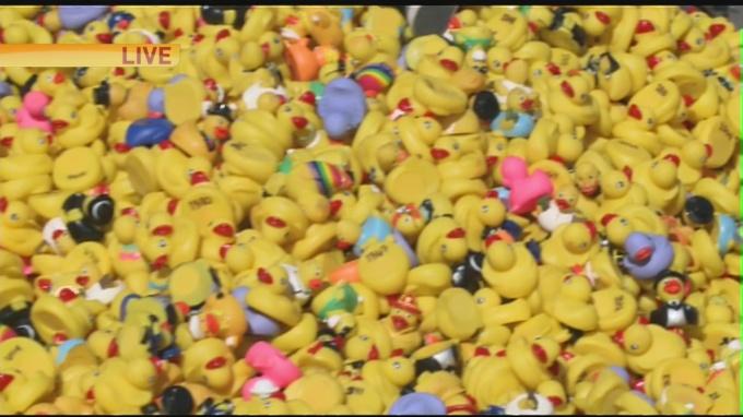 Duck derby 1