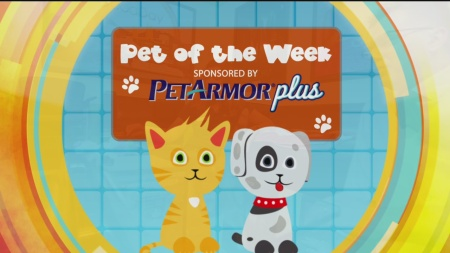 Pet of the Week logo 1