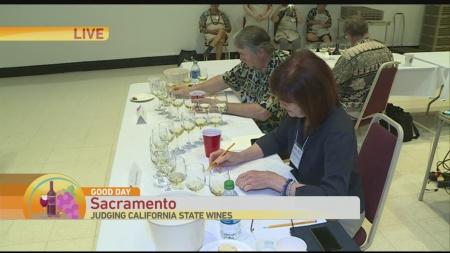 Wine Judge 2