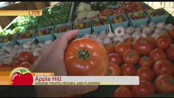 Apple Hill 2