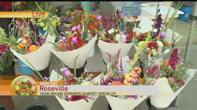 Roseville Farmers Market 1