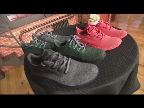 Allbird shoes 1