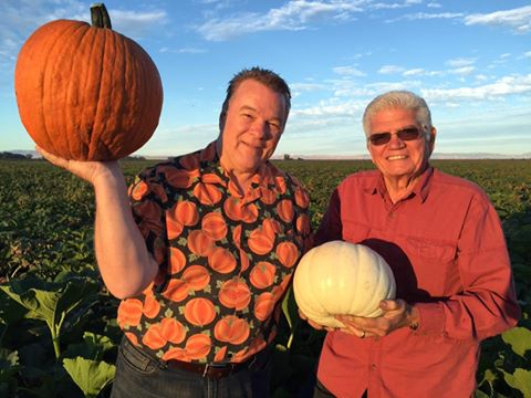 Pumpkin Farm 3