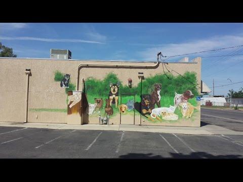 Rio Linda Vet Mural 1