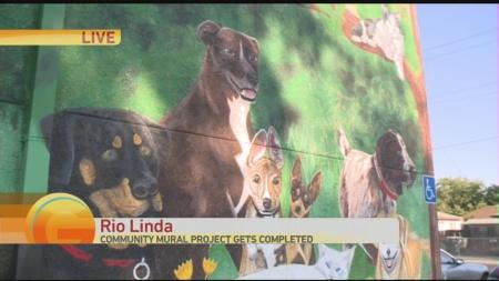 Rio Linda Vet Mural 2