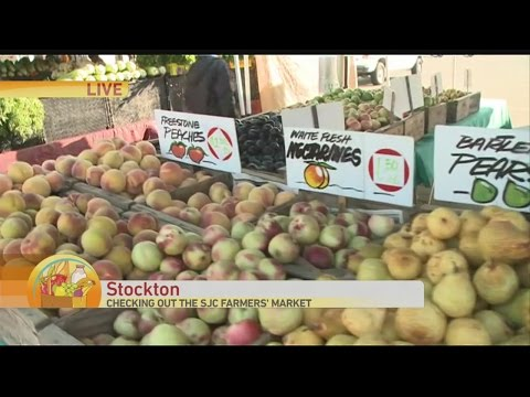 SJC Farmers Market 1