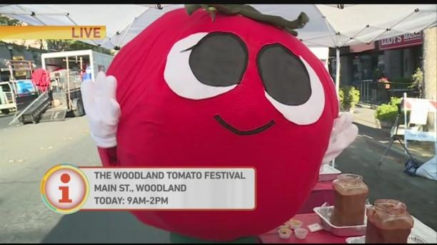 Woodland Tomato Fest 1
