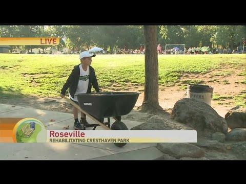 roseville-rotary-park-rehab-1