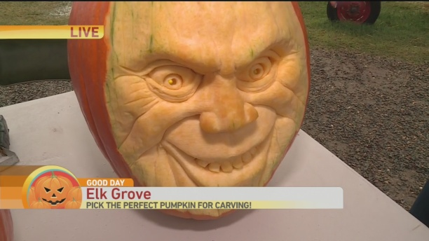 3d-pumpkin-carve-1