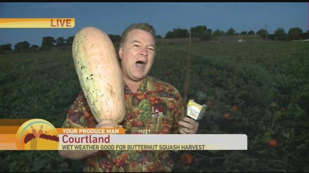 butternut-squash-1