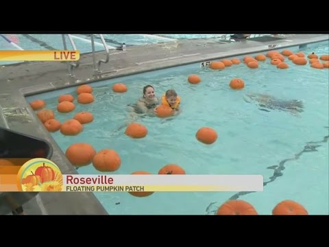 floating-pumpkins-1
