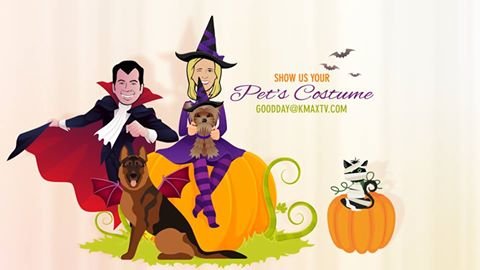 pets-in-costume-1