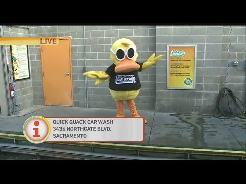 quick-quack-1