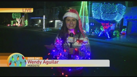 modesto-holiday-lights-2