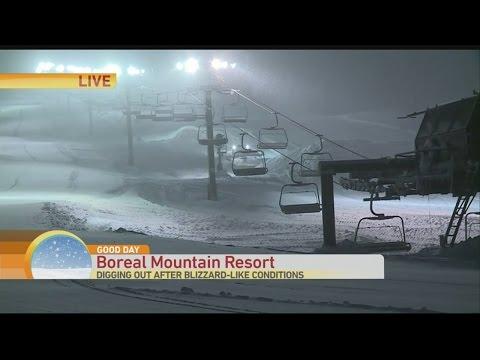 boreal-2