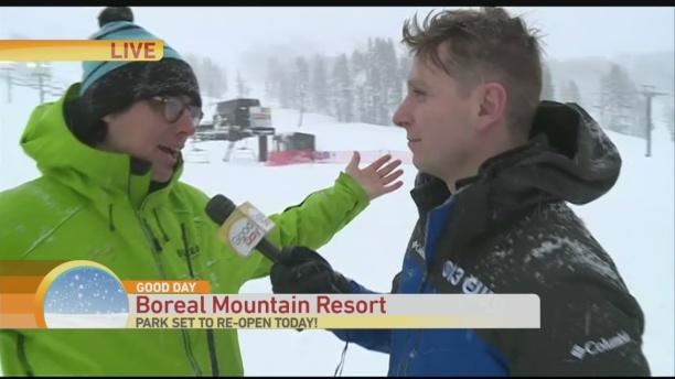boreal-4