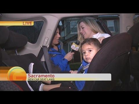 car-seat-law-1