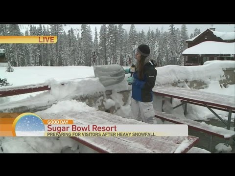 sugar-bowl-1