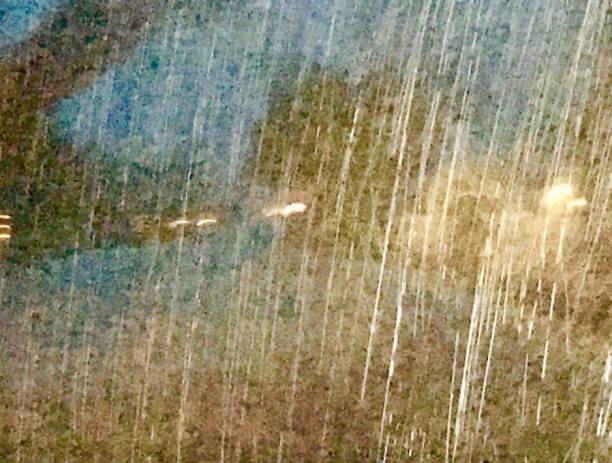 woodland-rain-2