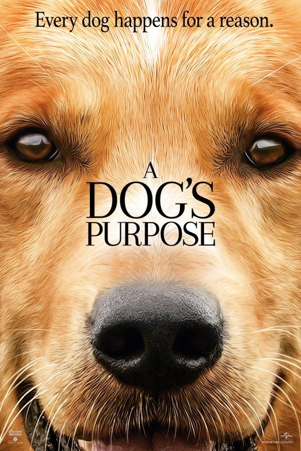 a-dogs-purpose-1