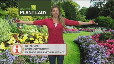 feb-12-plant-lady-5