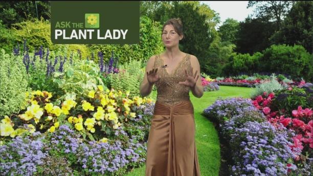 feb-26-plant-lady-3