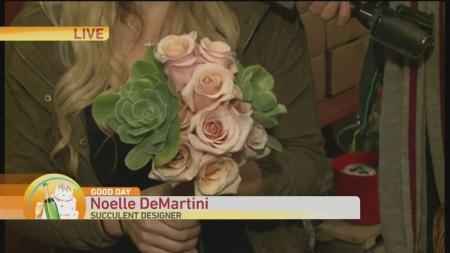 wedding-wednesday-succulents-1