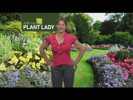 March 26 Plant Lady 1