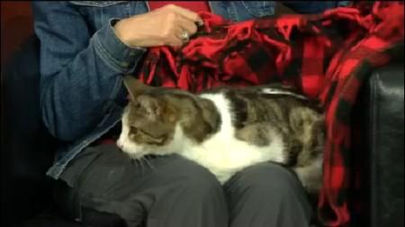 SPCA Duncan 1