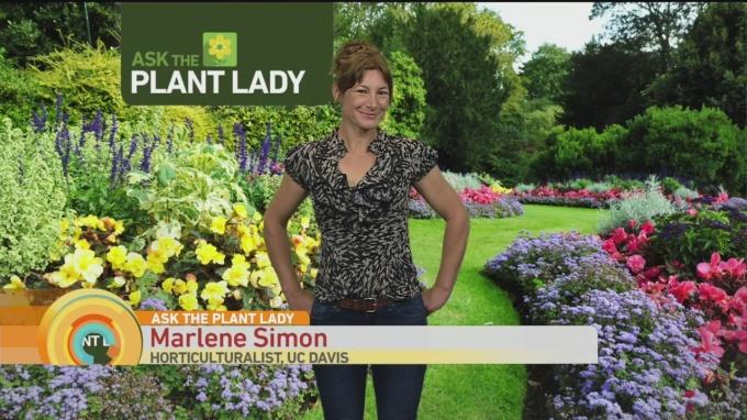 April 30 Plant Lady 1
