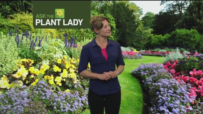 April 9 Plant Lady 4