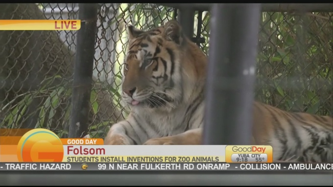 Folsom Zoo Students 1