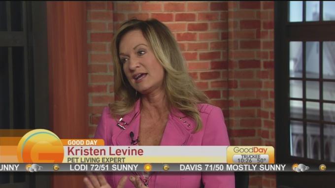 Kristen Levine 2