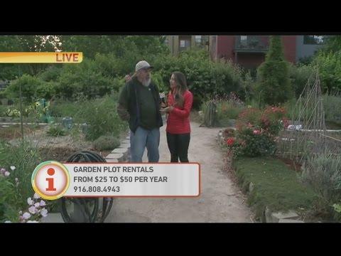 Garden Plot Rental 1