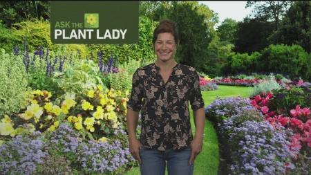 May 14 Plant 3