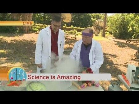 Jordan the Science Guy 1