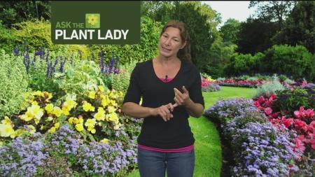 June 25 Plant Lady 1
