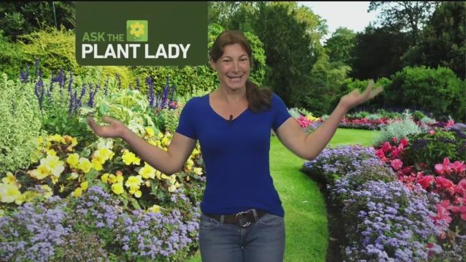 June 3 Plant Lady 2